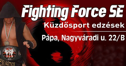 Fighting Force SE
